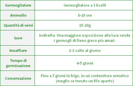 germogli-fieno-greco-consigli-germinazione