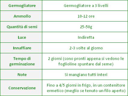 germogli-lenticchie-consigli-germinazione