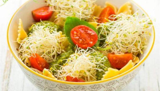 Pasta-pesto-pomodorini-germogli-alfalfa