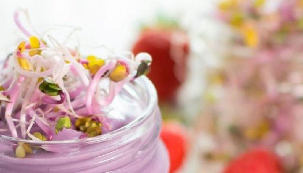 yogurt-germogli-ravanello