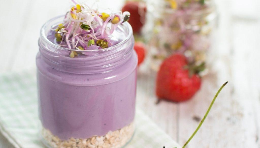 yogurt-mirtillo-germogli-ravanello