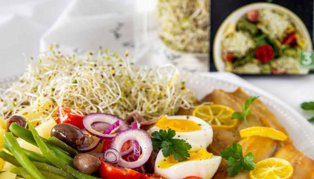 insalata-nizzarda-germogli-alfalfa-2
