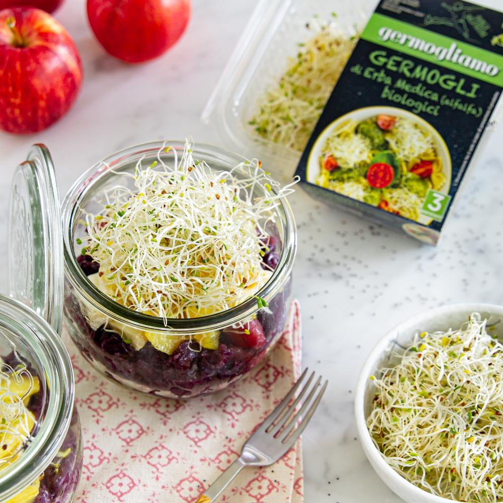ricetta-schiscetta-germogli-alfalfa